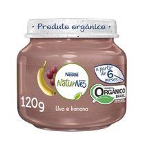 edbb7dfc1c89e05dbe8d445951f4360f_papinha-organica-nestle-naturnes-uva-e-banana-120g-969556_lett_1